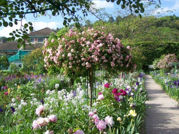 jardim-inglês-3-gabrielafurquim